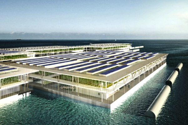 floating farms 1