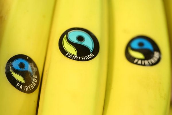 commercio equo rapporto fairtrade 2014
